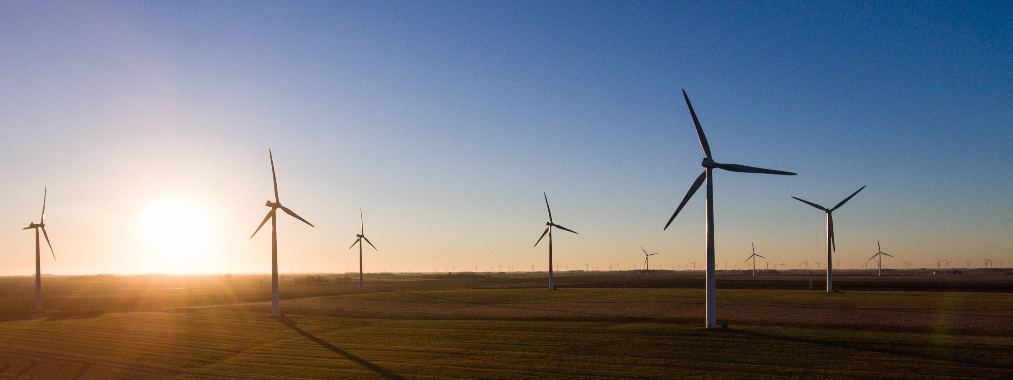 Report: Wind power now cheapest option for new capacity