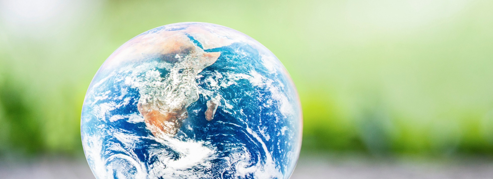 The Energy Co-op Celebrates Earth Month