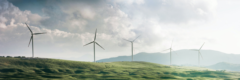 The Energy Co-op 2021 Annual Member Meeting